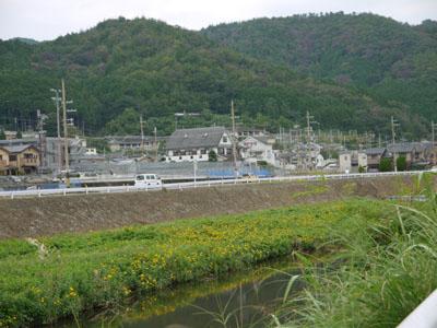 賀茂川上流