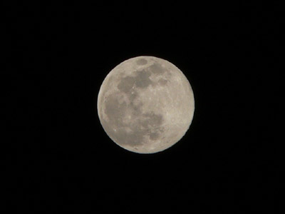明日が満月