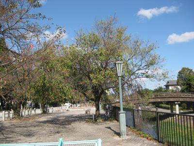 男山とさざなみ公園