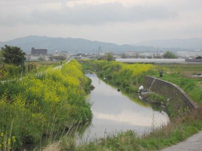 大谷川上流