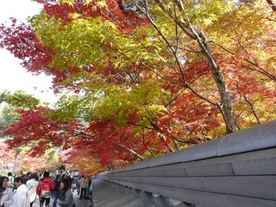 秋の東山散策