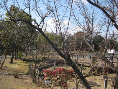 枚方市民の森公園