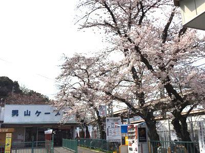 男山ケーブル駅