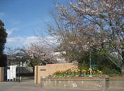 男山中学校.jpg